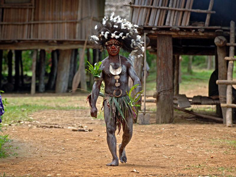 Wonders of New Guinea