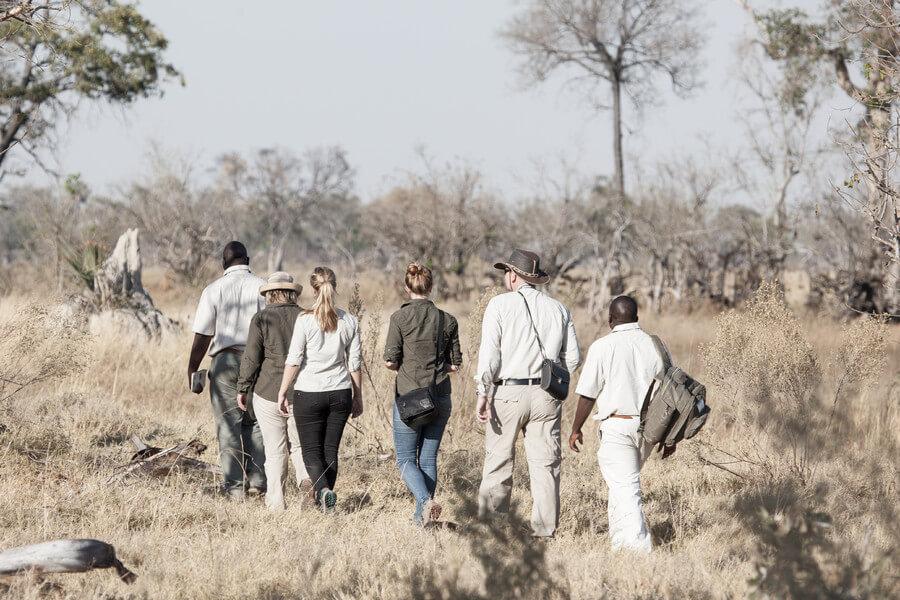 Safari - Gunns