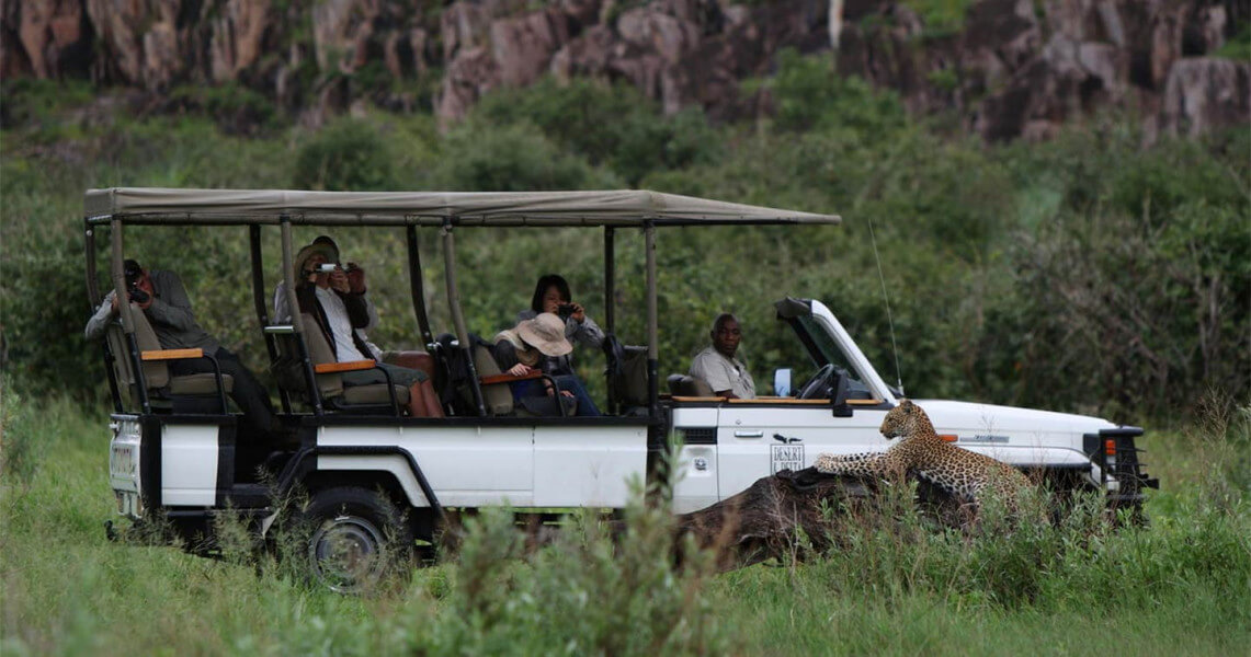 Safari - Savuti