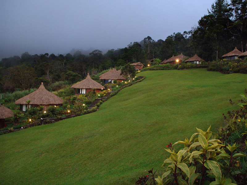 Ambua Lodge, Tari
