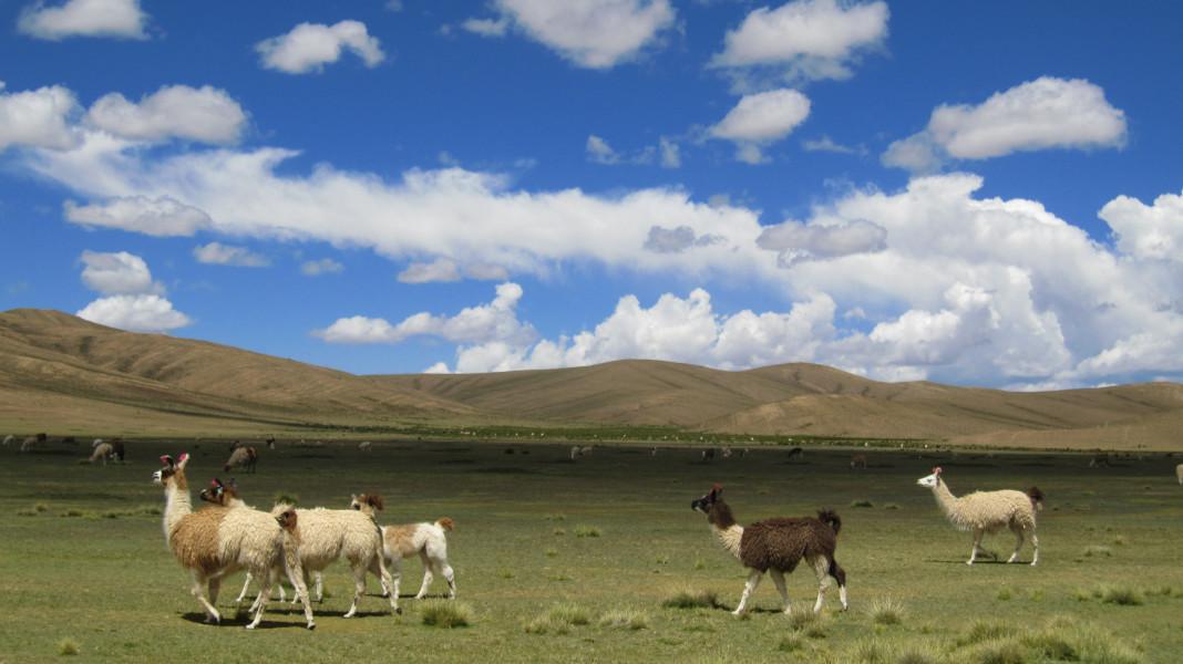 5 Day Trip from Tupiza to Uyuni with Sky-blue lagoon