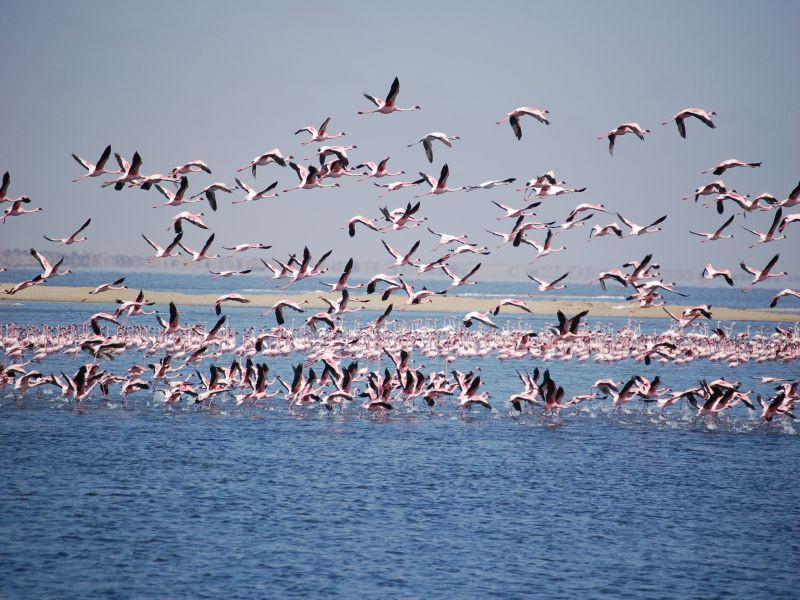 Sossusvlei - Walvis Bay - Swakopmund