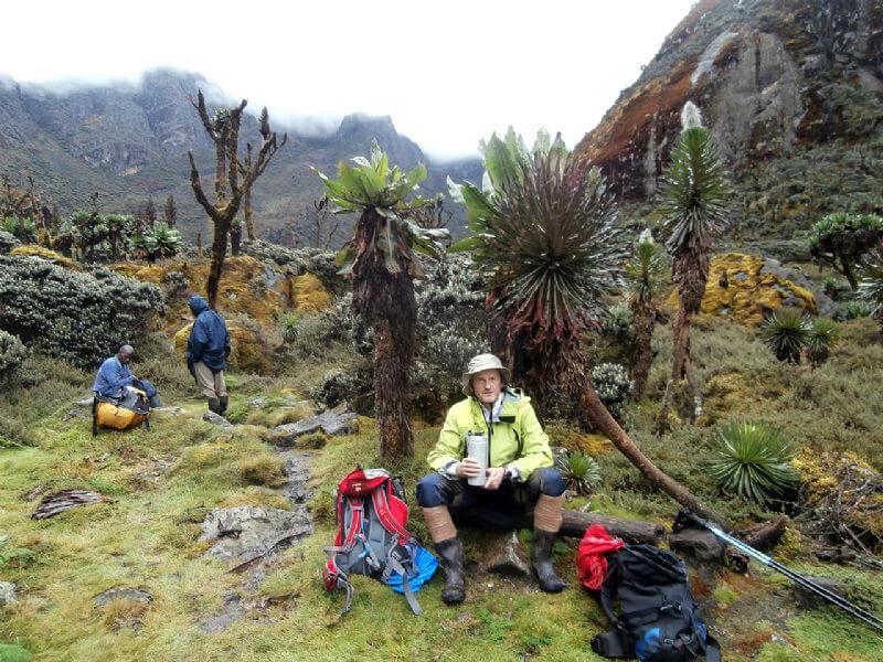 14 Days Rwenzori Mountains Hike (Climbing) and Gorilla trekking safari in uganda