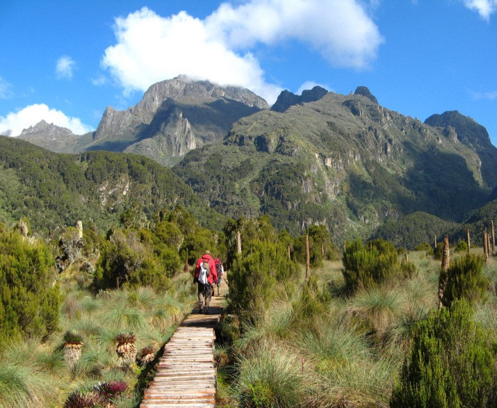 14 Days Rwenzori Mountains Hike (Climbing) and Gorilla trekking safari in uganda