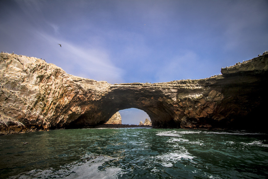 Ballestas Islands Tour and back to Lima