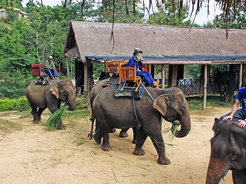 Family Adventures in Laos
