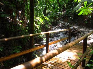 Bahía Solano - Visit to natural reserve
