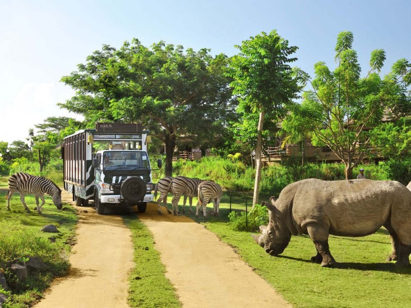5 Days Water Sport + Uluwatu Temple + Bali Safari & Marine Park