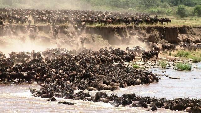 8 Days MASAI MARA - LAKE MANYARA - NGORONGORO