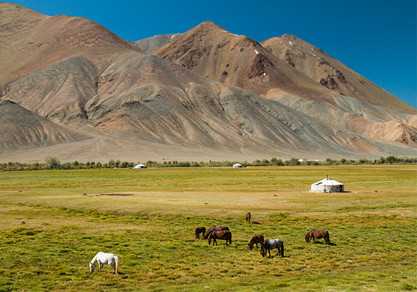 Mongolia Overland Special Tour