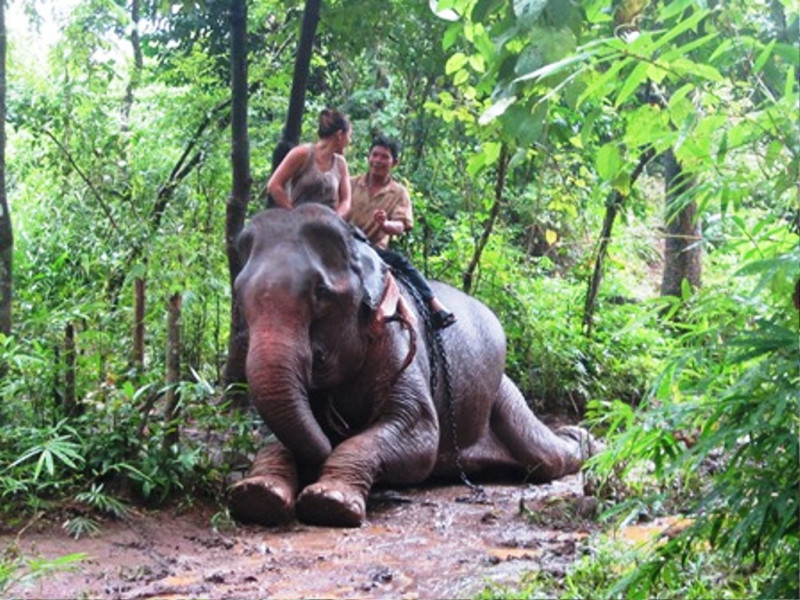PHNOM PENH – RATTANAKIRI – MONDULKIRI 6DAYS/5NIGHTS