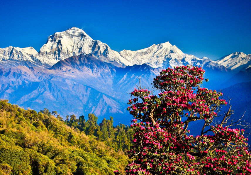 NEPAL- IN THE SHADOW OF HIMALAYAS