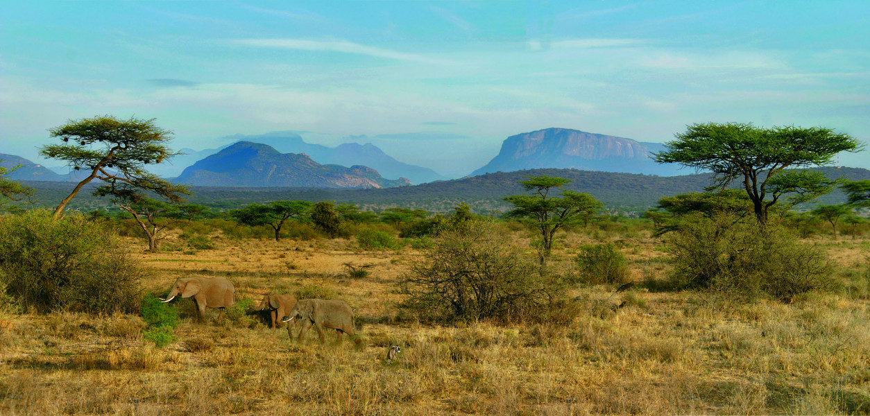 4-Day Adventure Express Safari