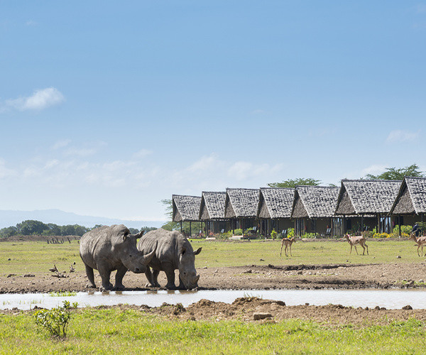 8-Day Enchanting Kenya Safari