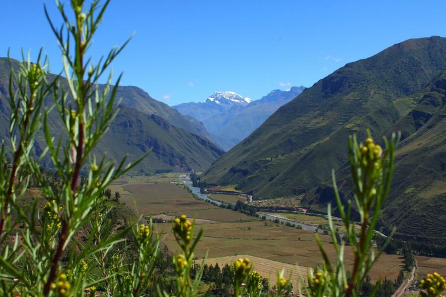 Andean Treasures