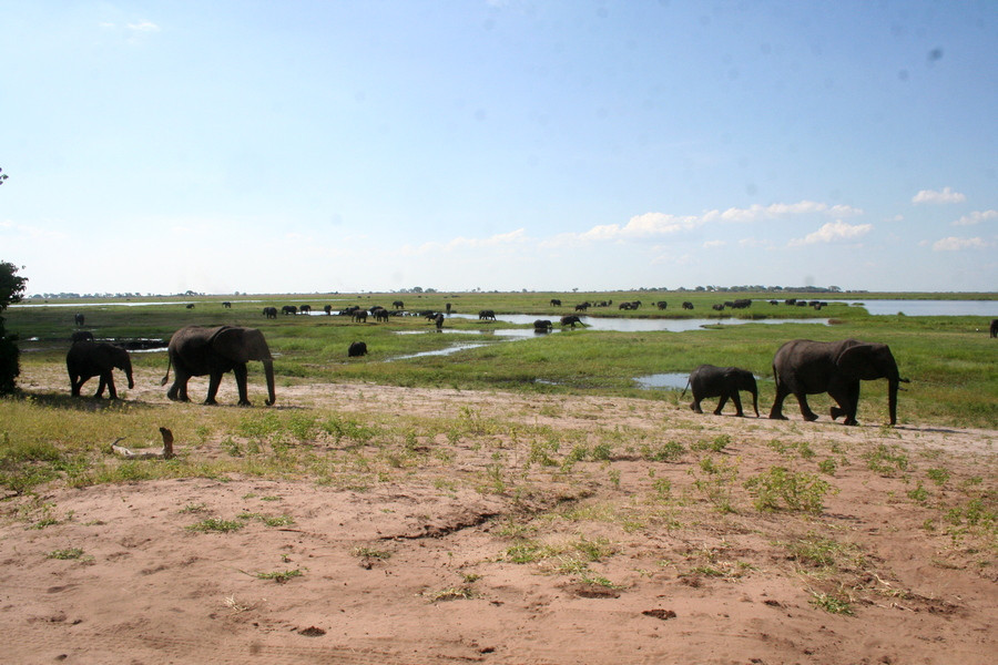 14 Day Namibia to Vic Falls