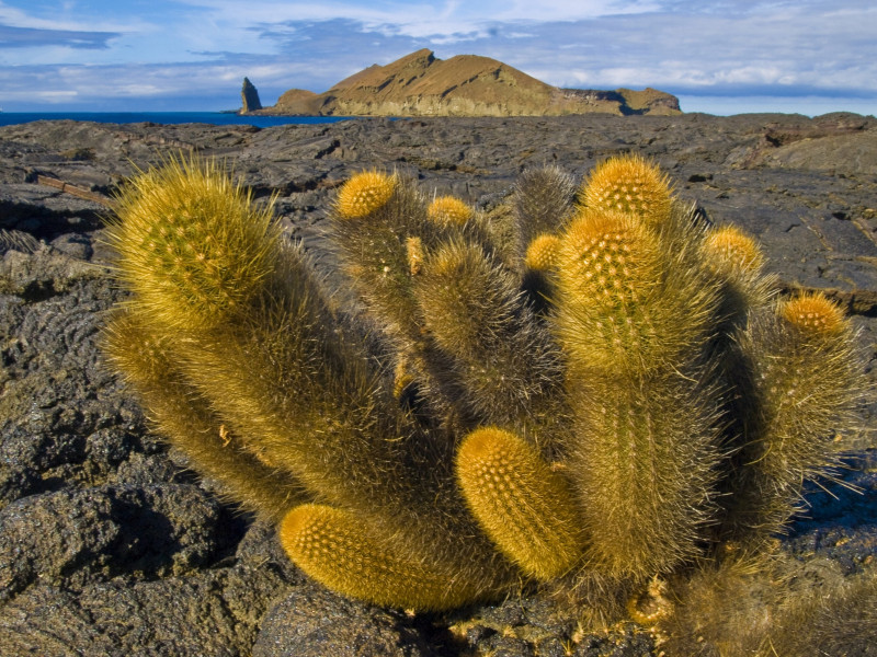 To the Remotest Corners of Galapagos