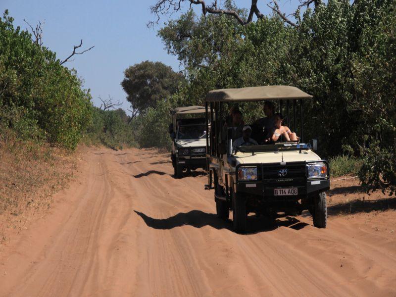 Victoria Falls - Chobe (optional)