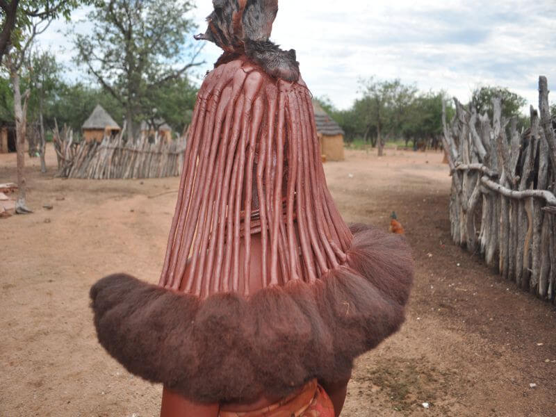 Petrified Forest - Twyfelfontein - Palm
