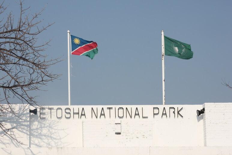 7 Day Namibia Tiny Etosha Tour