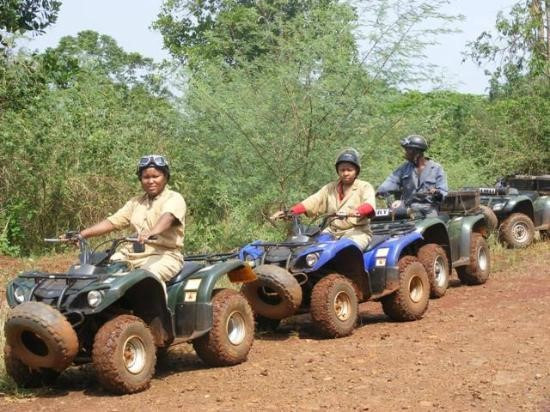 Wildlife with chimp and Gorilla trekking & Jinja city tour with rafting