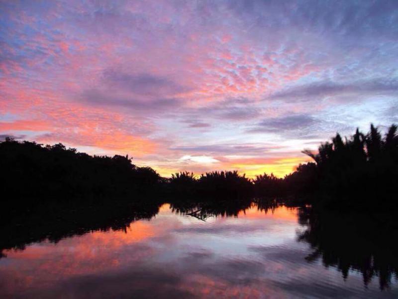 MANTANANI ISLAND + KAWA KAWA RIVER CRUIS