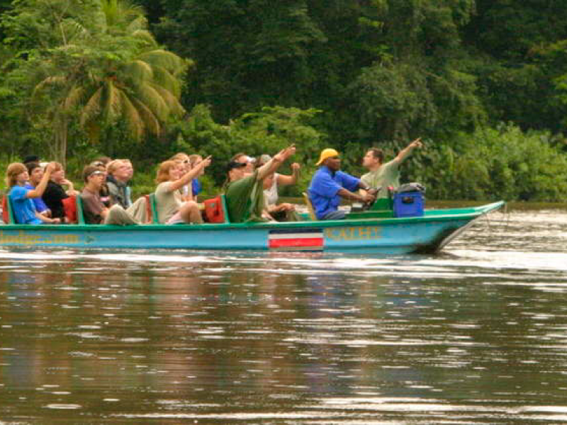 Wildlife in Tortuguero National Park