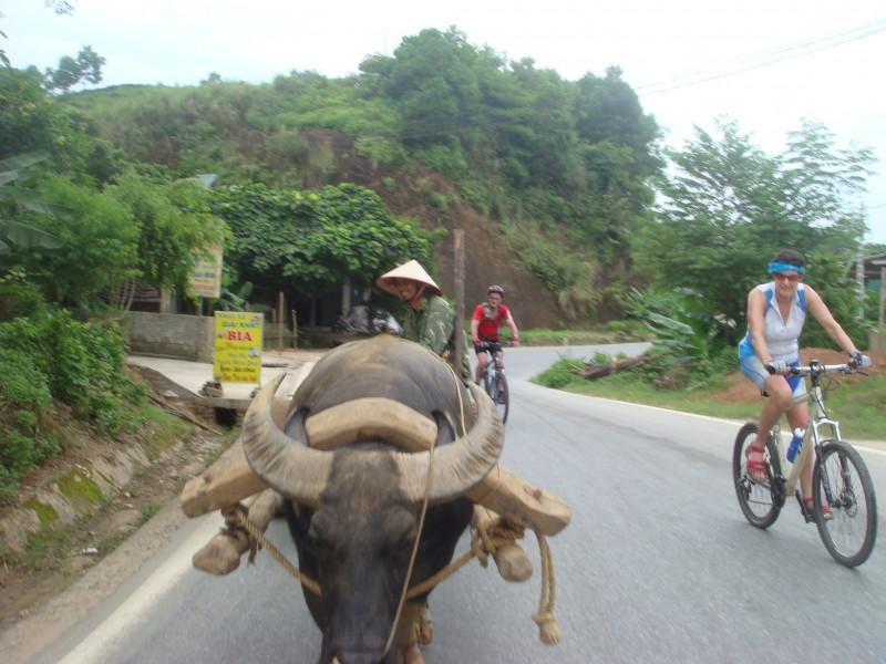 Vietnam Mysterious Northeast Cycling