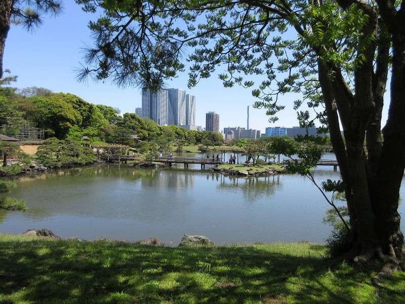 Tokyo Afternoon