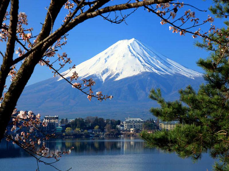 1-Day Mt. Fuji & Hakone