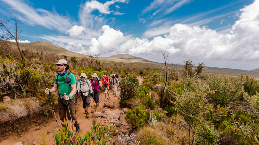 3 DAYS SERENGETI  & KILIMANJARO HIKING DAY TRIP