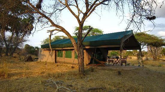 CULTURAL  SAFARI  VISIT MASAI VILLAGE & BUSHMEN HUNTING