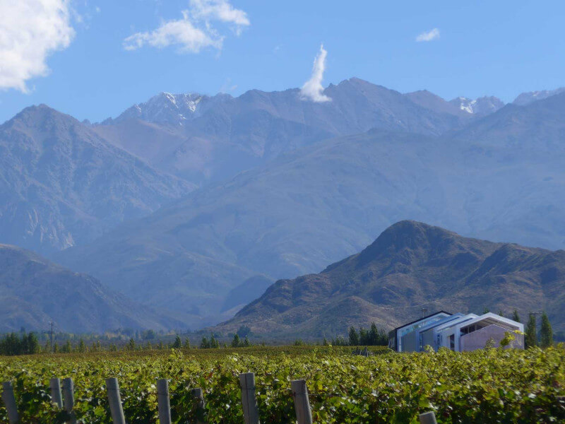 Wine & Relax in Mendoza & Buenos Aires