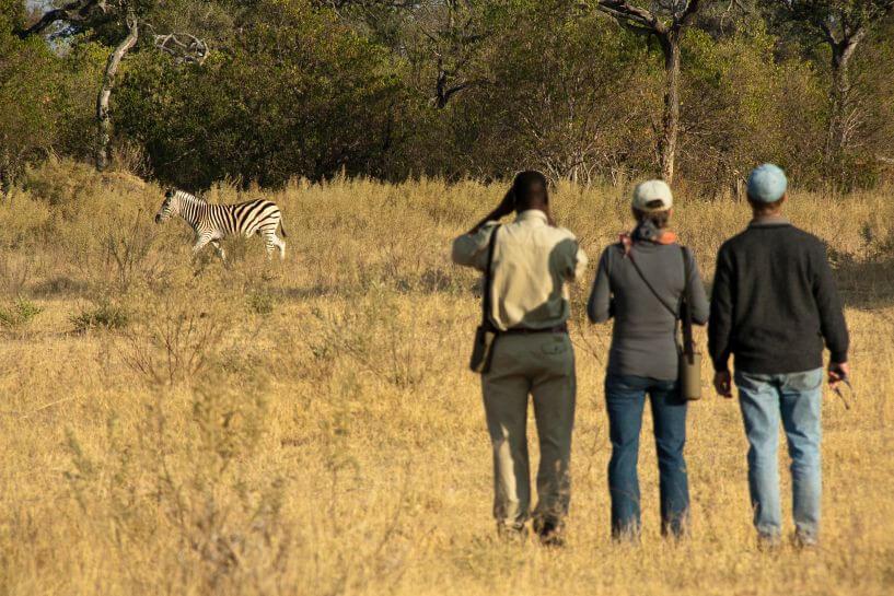 9-Day Vic FAlls, Chobe, Okavango Delta