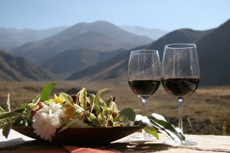 Mendoza: The Wine Route