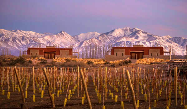 Mendoza - Winery (Uco Valley)