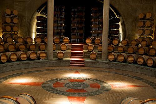 Mendoza - Wine & Oil