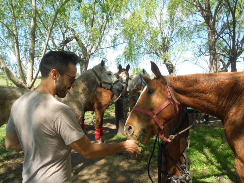 Buenos Aires - Polo Day