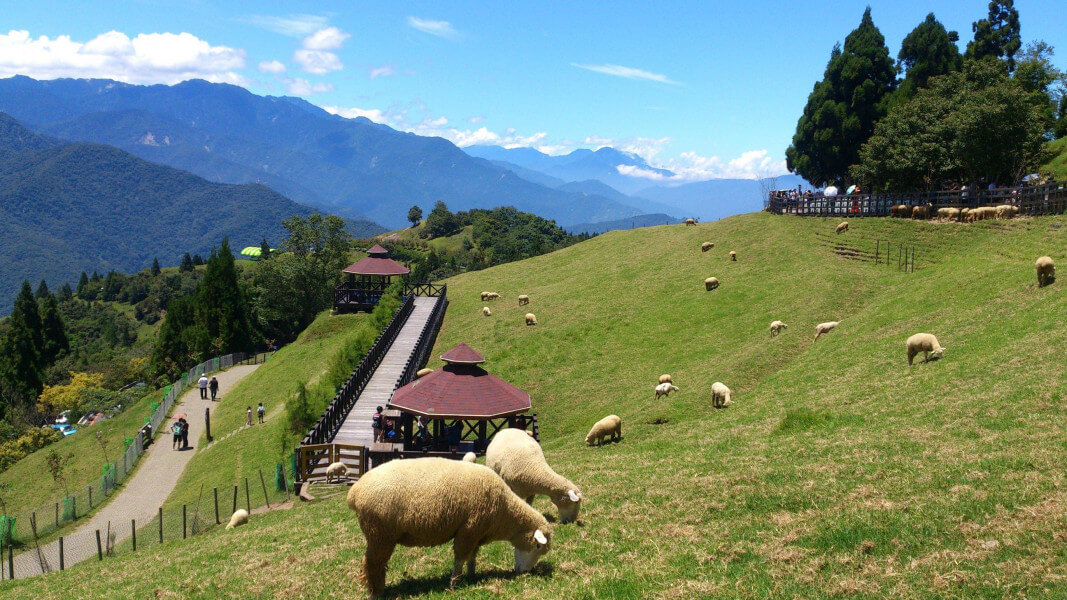 7-Day Central and Southern Taiwan Trip