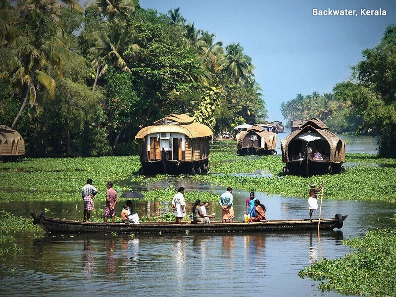 Spices and wildlife tour of majestic Kerala