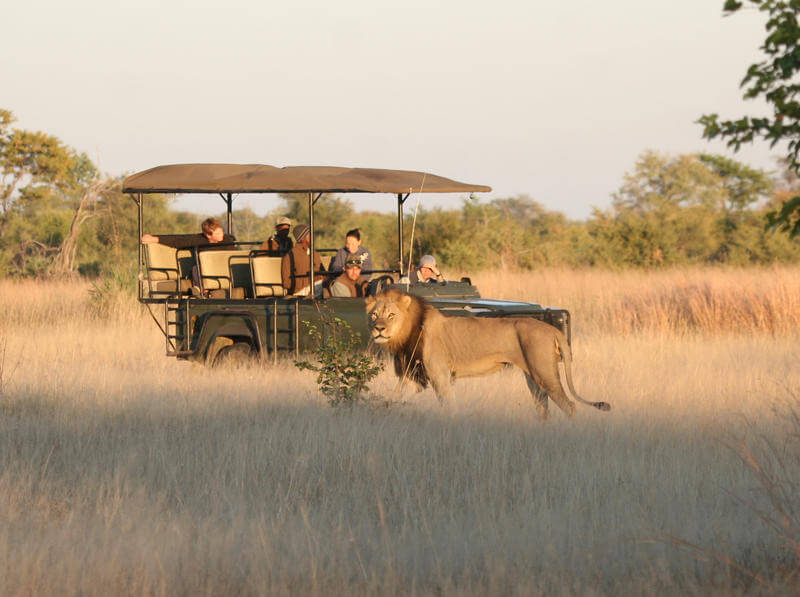 Hwange National Park.