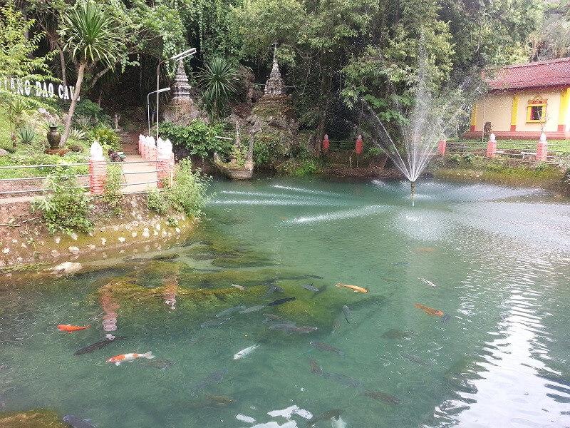 Exotic Chiang Dao (B,L)