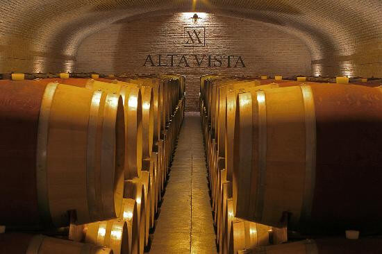 Mendoza - Wineries Full Day