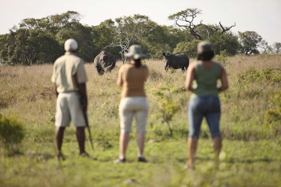 Classic South Africa Safari - 9 Nights