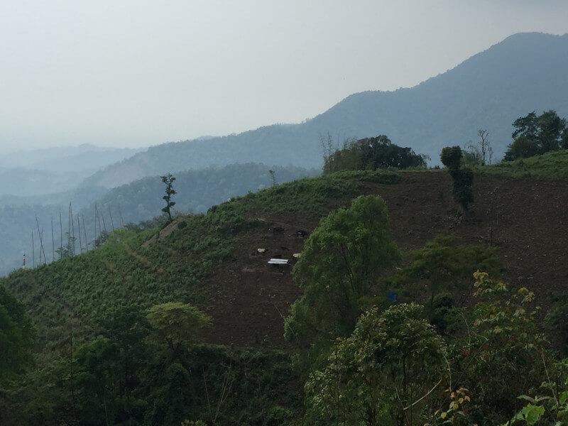 Cruising through Bhutan to Arunachal Pradesh