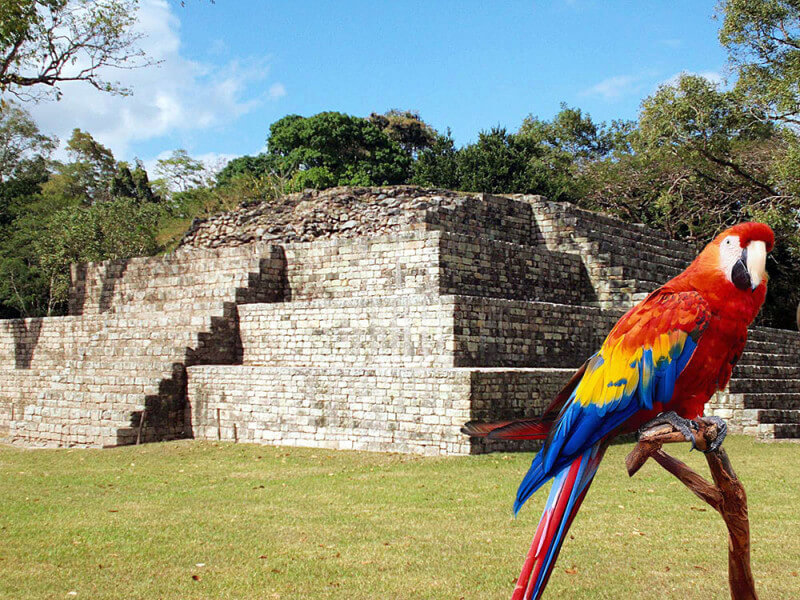 Atlantida + Copan Adventures 7 days