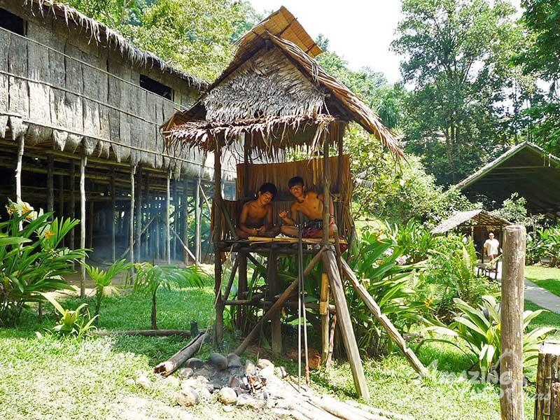 Mari Cultural Village/Probocsis Monkey
