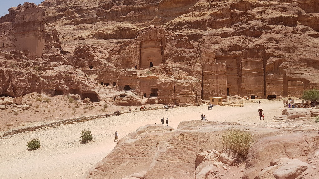 4 day Petra Module