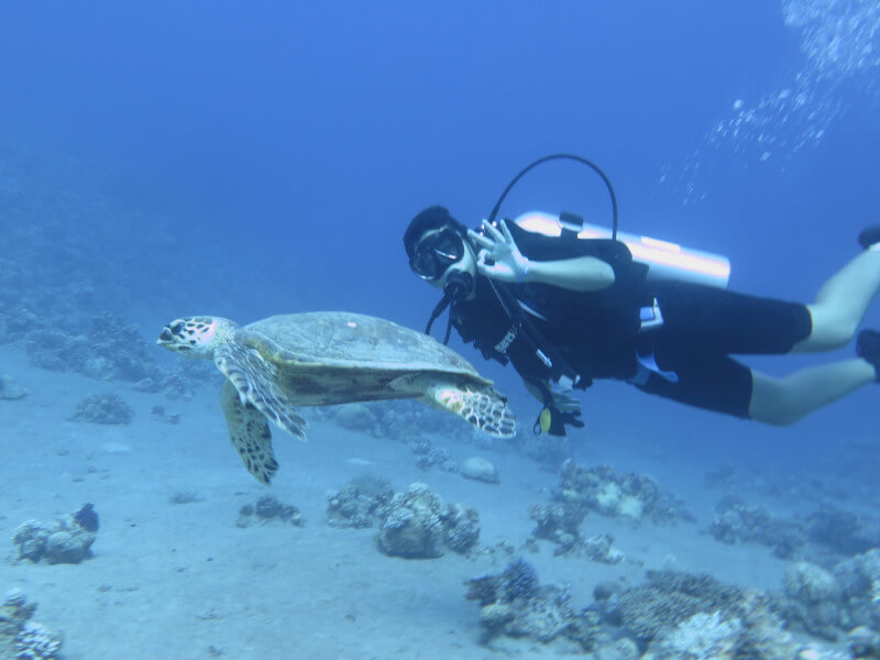 8 Day Dive & Golden Triangle Tour