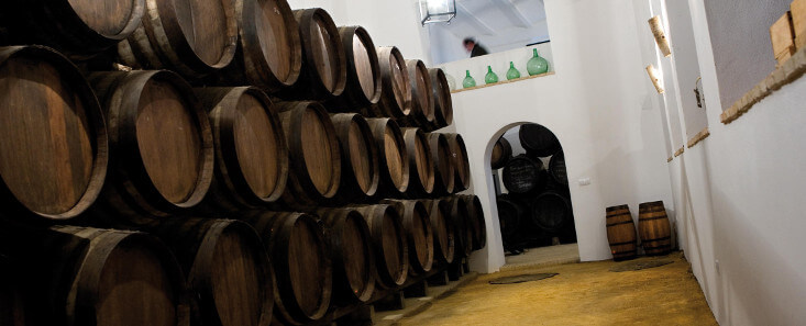 Montilla: Olive Oil & Wine
